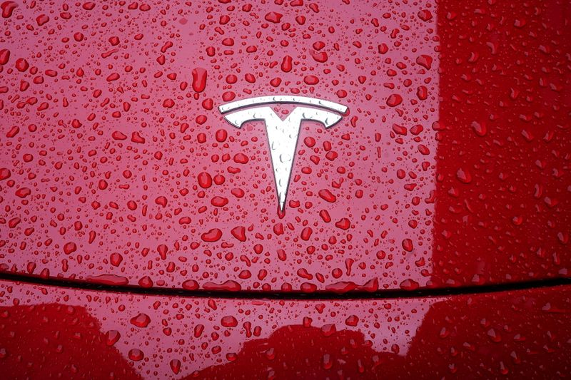 FILE PHOTO: A Tesla logo is pictured on a car in the rain in New York City