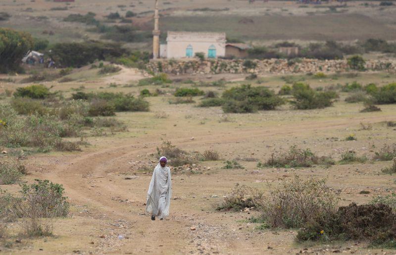 An internally displaced Ethiopian girl walks back to her village Sariir in Somali Region